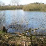 Charvil Lake